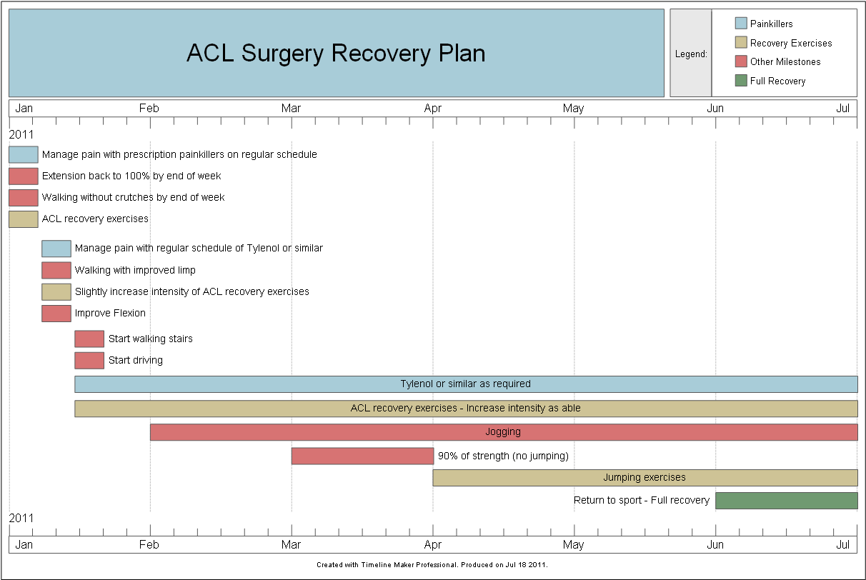 surgery recovery sample timeline created by timeline maker pro