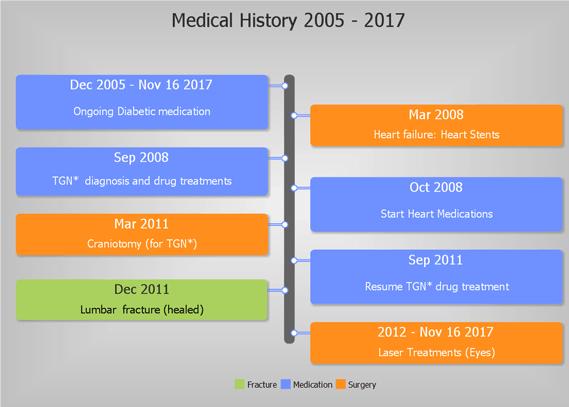 medical history timeline template